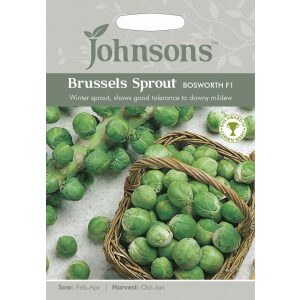 Brussels Sprout Bosworth F1 Jaz