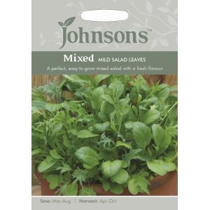 Mixed Mild Salad Leaves JAZ