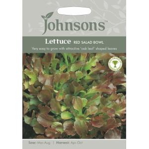 Lettuce Red Salad Bowl JAZ