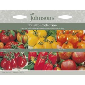Tomato Collection JAZ