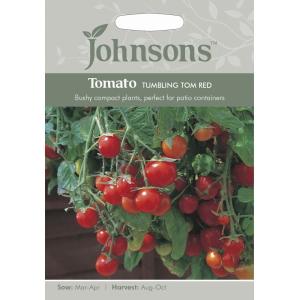 Tomato Tumbling Tom Red JAZ