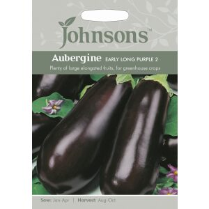 Aubergine Early Long Purple 2 JAZ
