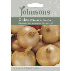 Onion Bedfordshire Champion JAZ