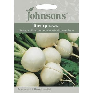 Turnip Snowball JAZ