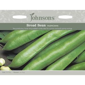 Broad Bean Valenciana JAZ