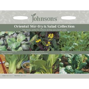 Oriental Stirfry+Salad Collection Jaz
