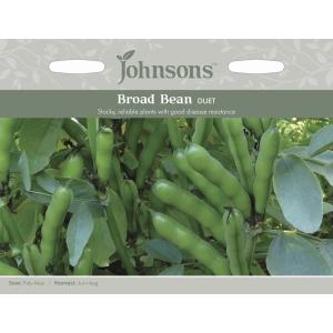 Broad Bean Duet Jaz