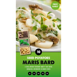 Seed Potatoes – Maris Bard