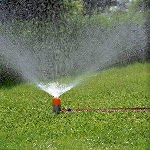 Classic Spray Fox Sprinkler