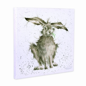 Hare Brained