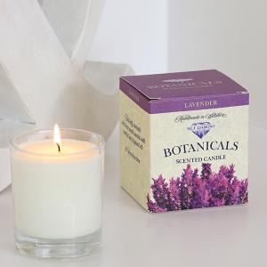 Botanicals Candle Lavender 30cl