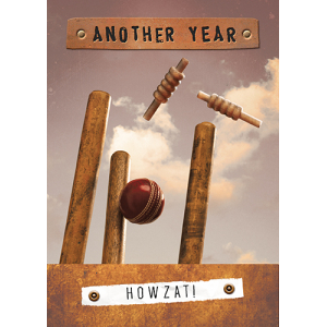 Another Year Cricket