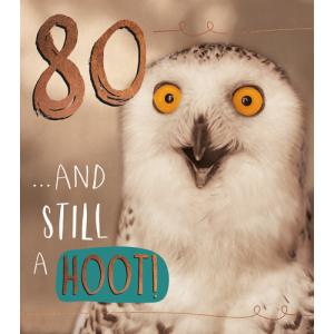 80 Owl