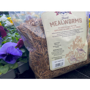 Finest Mealworms 500g