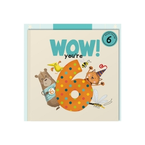 Wow Youre 6 (Six) Birthday Card Book
