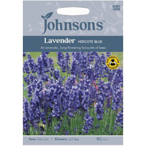 Grow Your Own Potted Lavender