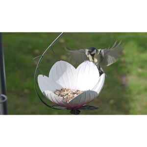 Lily Hanging Feeder with Free Superior Seed Mix 2kg