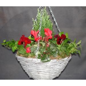 Willow Hanging Basket Grey 12in