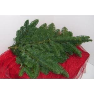 Foliage Bundle