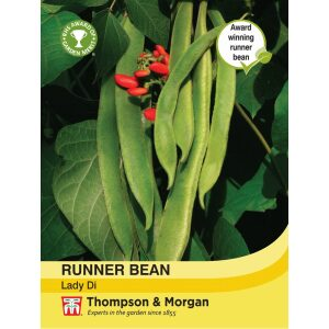 Runner Bean Lady Di