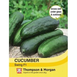 Cucumber Swing F1 Hybrid