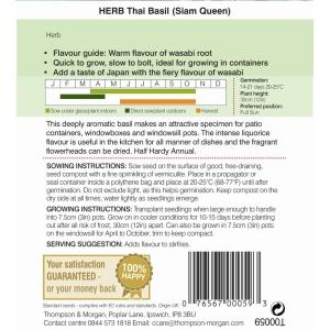 Herb Basil Siam Queen