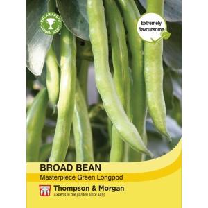 Broad Bean Masterpiece Green Longpod