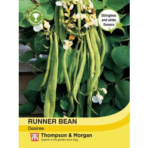 Runner Bean Desiree