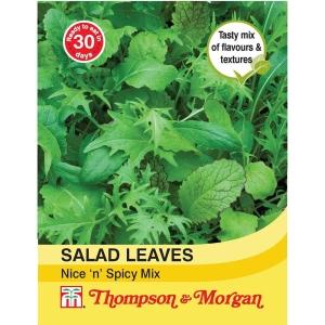 Salad Leaves Nice N Spicy Mixed