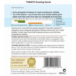 Tomato Growing Secret Special Marigold