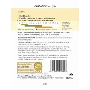 Cabbage Primo 11
