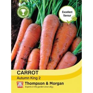 Carrot Autumn King 2