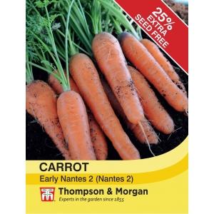 Carrot Early Nantes 2 Nantes 2