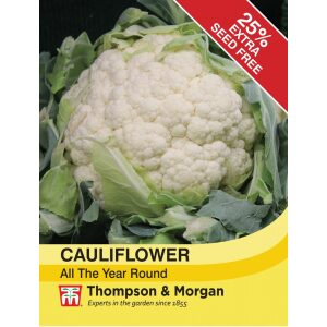 Cauliflower All The Year Round