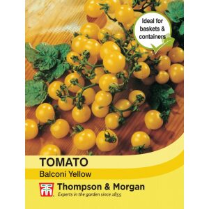 Tomato Balconi Yellow
