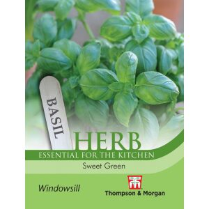Herb Basil Sweet Green