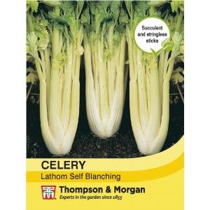 Celery Lathom Self Blanching