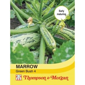Marrow Green Bush 4