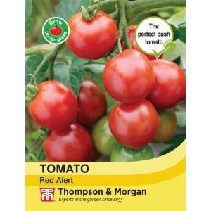 Tomato Red Alert Bush