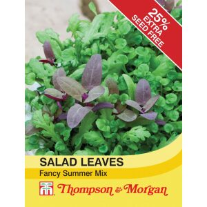 Salad Leaves Fancy Summer Mix