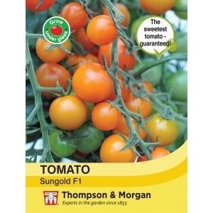 Tomato Sungold F1 Hybrid