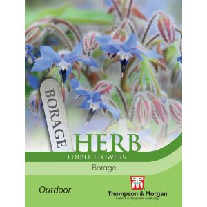 Herb Borage
