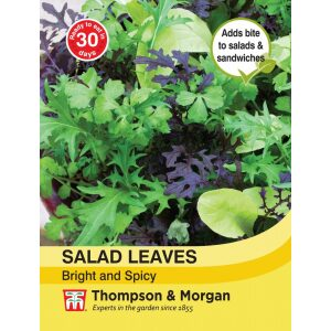 Salad Leaves Bright+Spicy