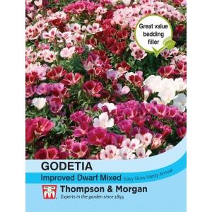 Godetia Improved Dwarf Mixed