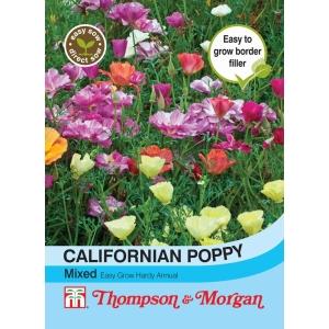 Californian Poppy Mixed