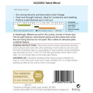 Gazania Talent Mixed
