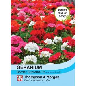 Geranium Border Supreme F2 Hybrid