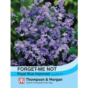 Forgetmenot Royal Blue Improved
