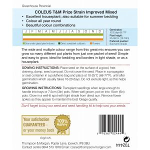 Coleus T+M Prize Strain Improved