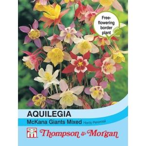 Aquilegia McKana Giant Hybrids Mixed